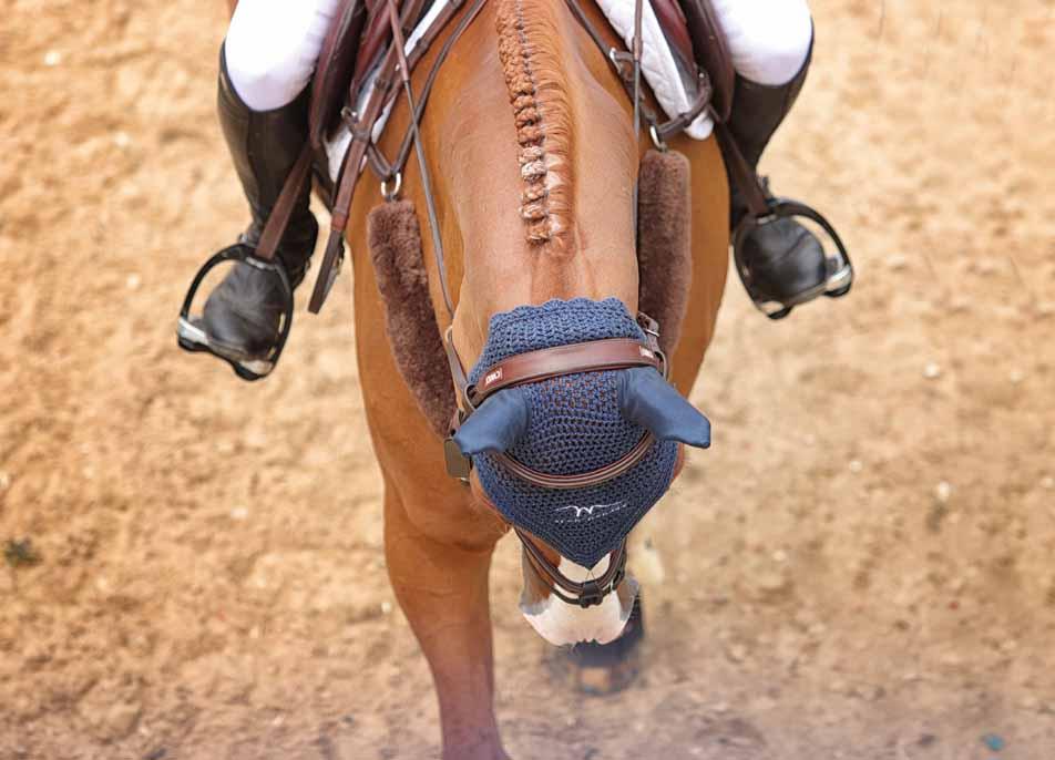 British Young Horse Championships • Bolesworth