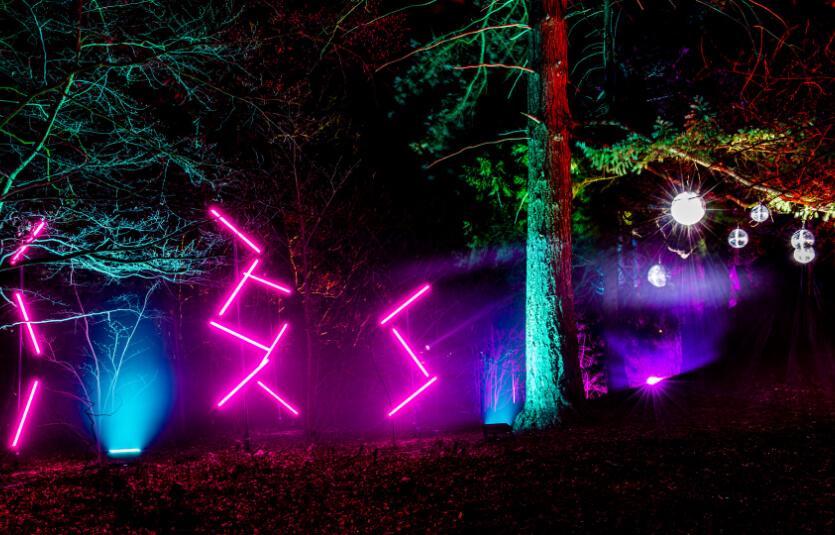 Christmas lights at Bolesworth